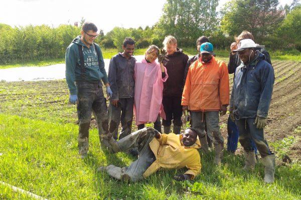 ihmisryhmä pellolla sadevaatteissa